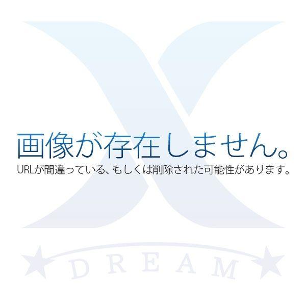 昭和レトロな趣のある家。緑と風に囲まれる住まいをお探しの方は必見です。 表紙