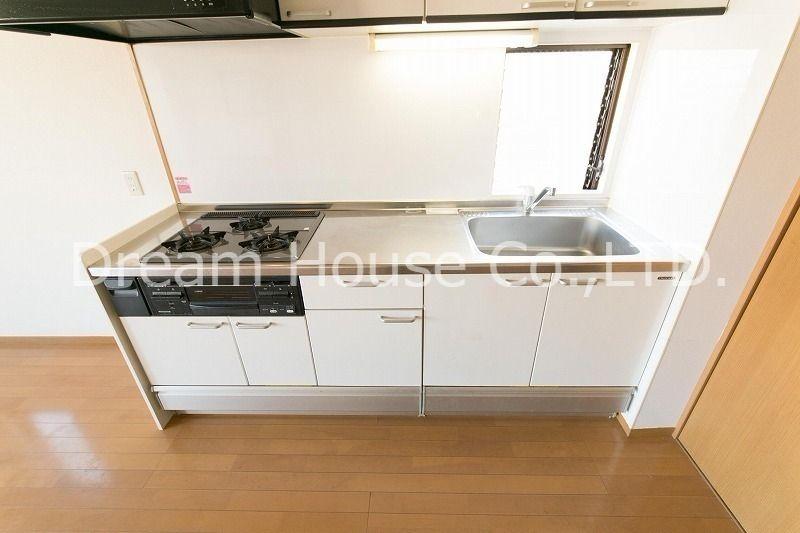 本格的なシステムキッチンを備えている白山井口ビル501(三田線白山駅5分の賃貸マンション)