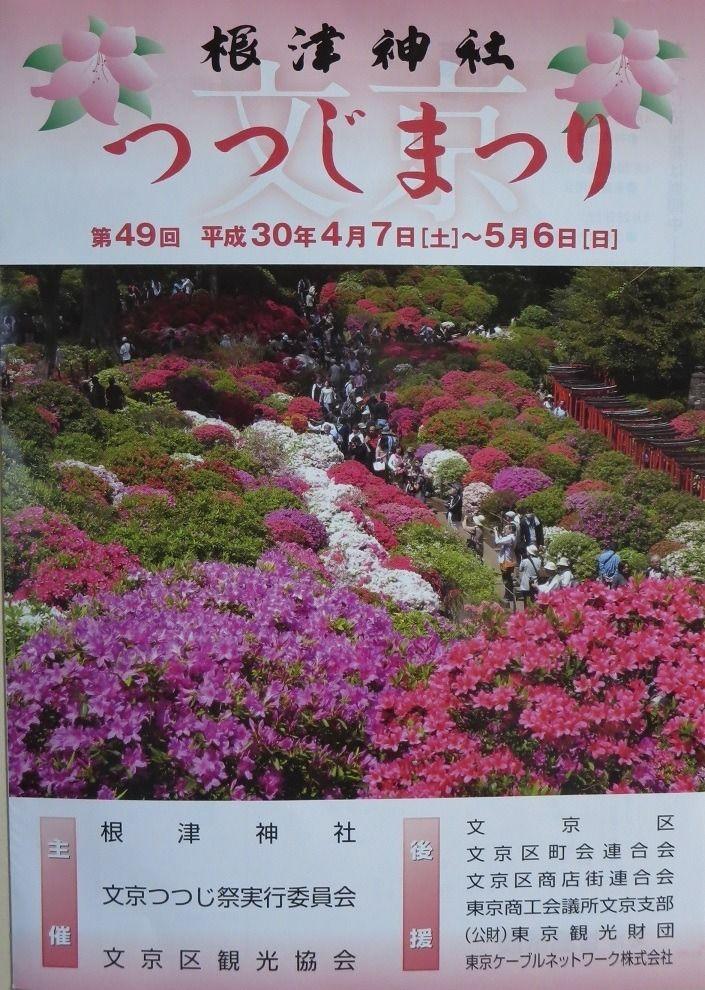 文京区の五大花まつりのひとつ、第49回文京つつじまつりが4月7日より根津神社で開催されます。