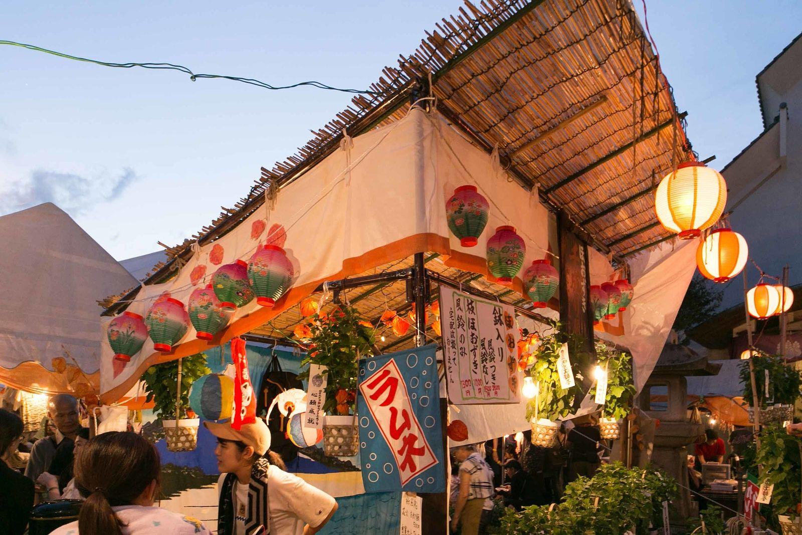 文京区向丘イベント ほうずき千成り市